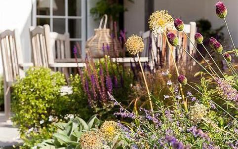 Garden Design Surrey RHS Award Winning Designer Raine Garden