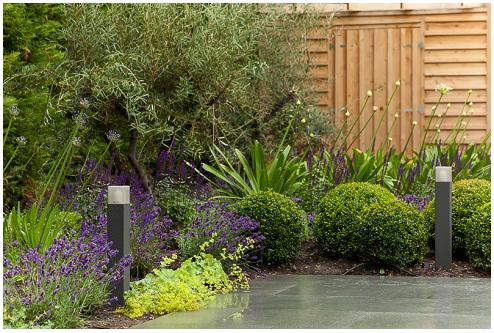 Corporate Landscape Designer Surrey