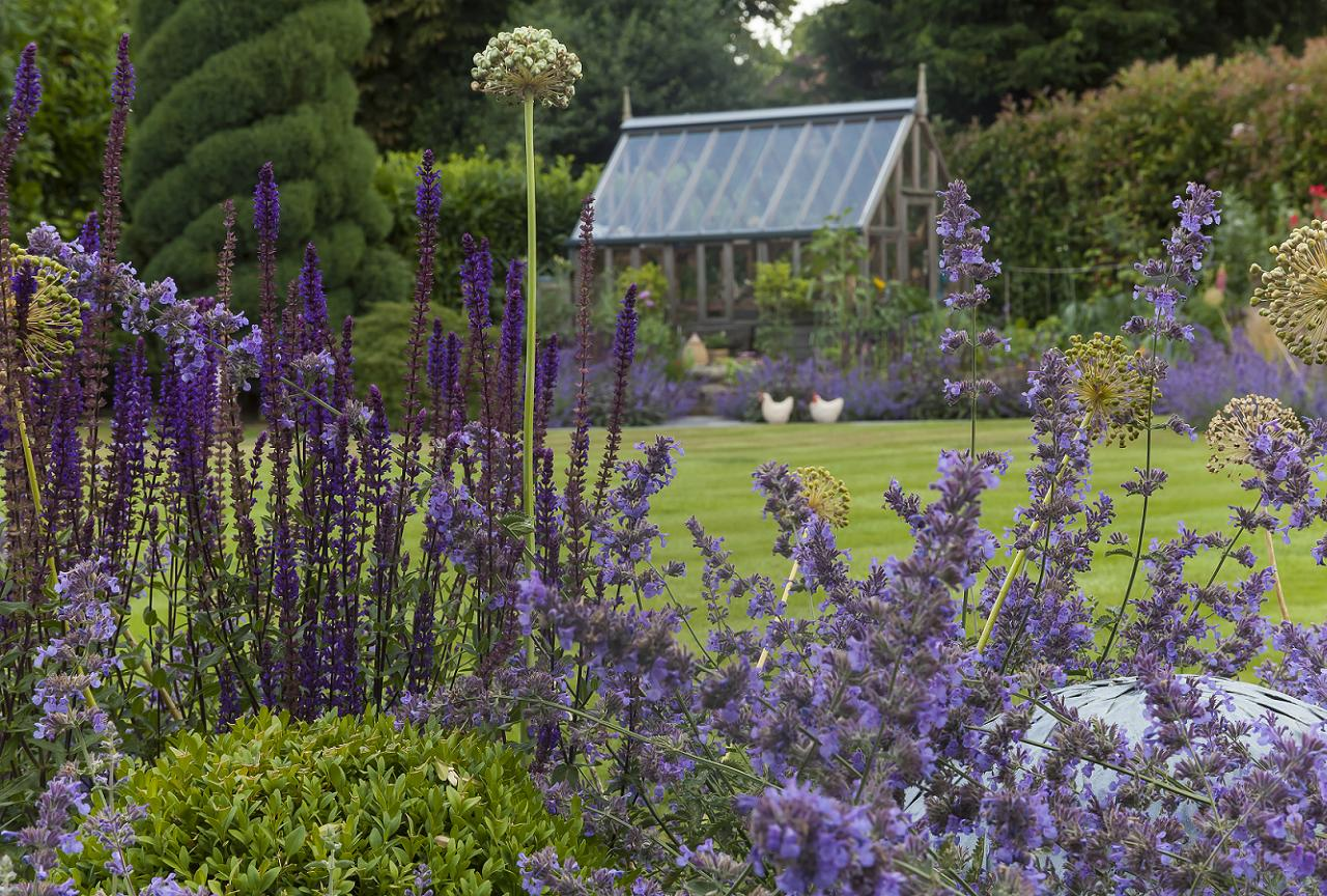 Garden Design Surrey - Planting